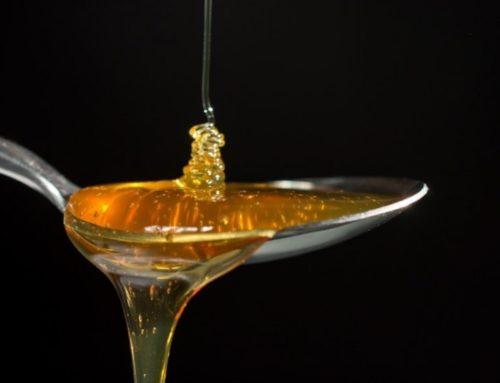 Beneficios que aporta la miel a nuestro organismo
